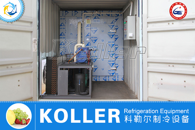 40ft Containerized Cold Room (-60℃)