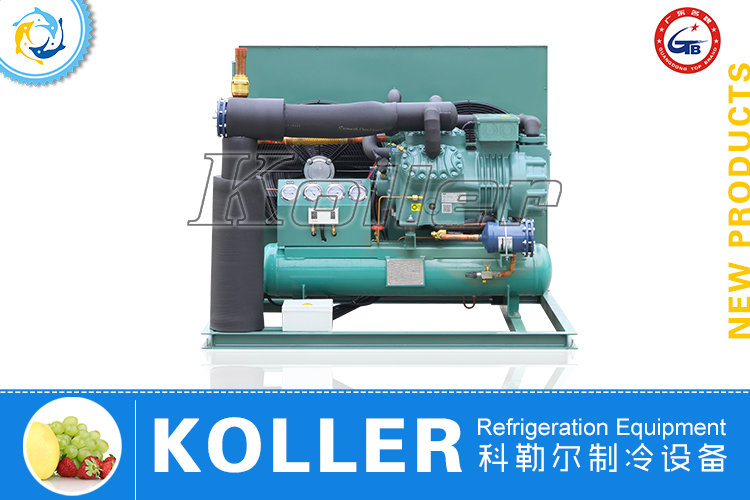 Two Stage Compressor Condensing Unit (-40℃)
