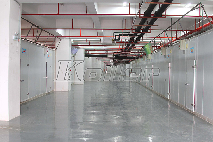 Large Cold Room Project in Shenzhen,China